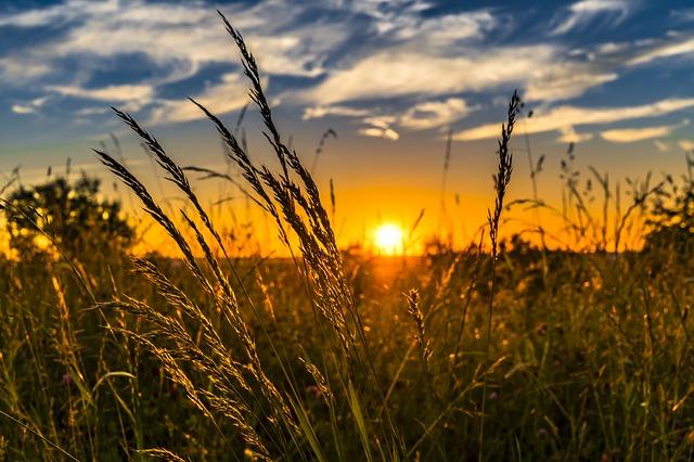 Nyár este